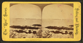 Lowell Island from the willows, from Robert N. Dennis collection of stereoscopic views.png