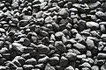 Lumps of coal.jpg