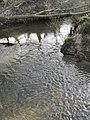 Mündung der Fischach in die Bühler bei Kottspiel.jpg