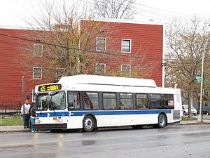 Q25 and Q34 buses - A Q25 bus in Kew Gardens Hills.