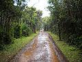 Macchabée Trail (4823896696).jpg