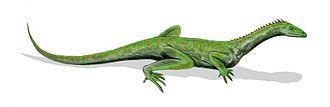 Protorosaurus - Image: Macrocnemus BW