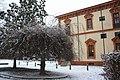 Magnolia - panoramio - Gio la Gamb.jpg
