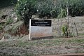Mahatima Gandhi monument 2.jpg