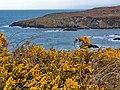 Maidenhed bay - panoramio (1).jpg