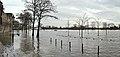 Main-Hochwasser Januar 2011 F-Hoechst.jpg