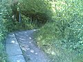 Manchester bolton and bury canal Nob End path leads into canal base.jpg