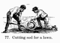 Manual of Gardening fig077.png