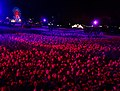 Massed tulips under lights at Canberra Floriade.jpg