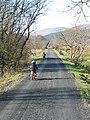 Mawddach cycle path - geograph.org.uk - 348390.jpg