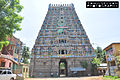 Mayuranathar Temple Entrance - Long View.jpg