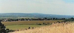 McLaren Vale - Image: Mc Laren Vale