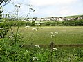 Meadow, Croyde - geograph.org.uk - 1325452.jpg
