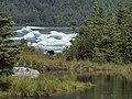 Mendenhall L with Bear Icebergs.jpg