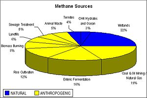 Atmospheric methane - Image: Methane Sources