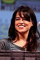 Michelle Rodriguez Picture.jpg