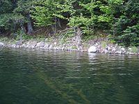 Michigan's Clark Lake (Gogebic County).jpg