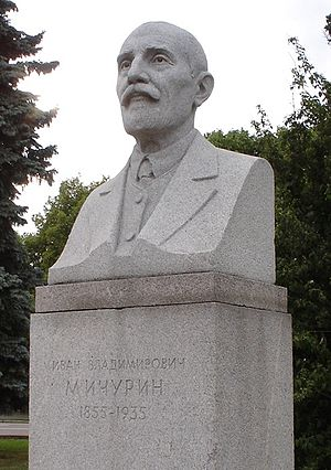 Ivan Vladimirovich Michurin - Michurin's bust in front of Moscow University