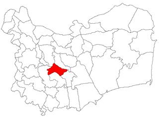 Mihai Bravu, Tulcea Commune in Tulcea, Romania