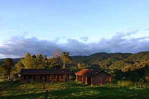 Itombwe Mountains - Image: Miki, dans le plateau d'Itombwe, 2005