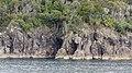 Milford Sound, South Island - panoramio (14).jpg