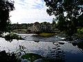 Mill and Weir at Stackallen - geograph.org.uk - 290234.jpg