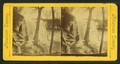 Minnehaha Falls, from Robert N. Dennis collection of stereoscopic views 5.png