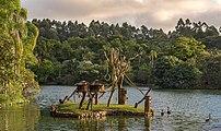 Monkey Island in São Paulo Zoo, Brazil.jpg