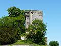 Montignac (24) château (6).JPG