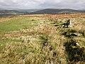 Moorland track, towards Combestone Tor - geograph.org.uk - 1529294.jpg