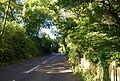 Morley's Rd (2) - geograph.org.uk - 1370963.jpg