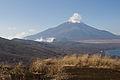 Mt.Fuji from Mt.Teppoginoatama 16.jpg