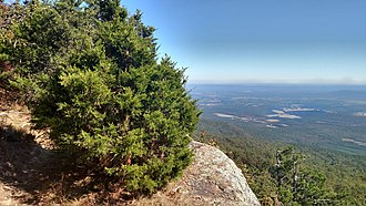 Arkansas Valley (ecoregion) - View from Mount Magazine, the highest point in Arkansas, looking down upon the low valleys and hills of the Arkansas Valley