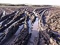 Muddy field gateway - geograph.org.uk - 104137.jpg