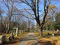 Munroe Cemetery, Lexington MA.jpg