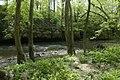 Muscatatuck River (6166381360).jpg