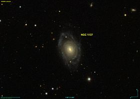 Image illustrative de l'article NGC 1137