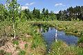 NSG-By-OA-00489.01-Breitenmoos 20. 05.2012-NL4.jpg