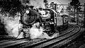 NSWGR Locomotive 3642 g.jpg