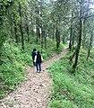 Nainital, Uttarakhand, India - panoramio - Vipin Vasudeva (10).jpg