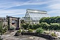 National Botanic Gardens In Glasnevin (Dublin) - panoramio (4).jpg