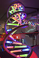 Naturalis Biodiversity Center - Museum - Exhibition Biotechnology 11 - Large multicolour model of DNA.jpg