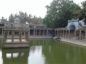 Nellaiappar Temple - The temple tank