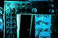 Neon Boneyard (39146150840).jpg