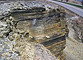New Albany Shale (Upper Devonian; MacDonald Knob Outcrop, Bullitt County, Kentucky, USA) 11 (44085616790).jpg