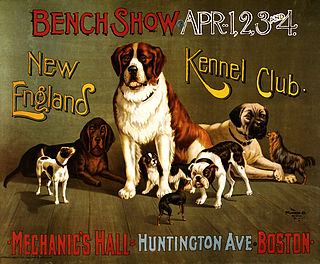 Kennel Dog Show
