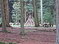 New Forest, Hampshire (460996) (9455053807).jpg