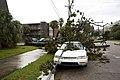 New Orleans Hurricane Isaac Jackson Ave.jpg