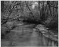 Newberry County, South Carolina. Misc. (No detailed description given.) - NARA - 522743.tif