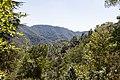 Nicosia, Cyprus - panoramio (45).jpg